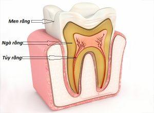 Điều trị tủy răng mất bao lâu